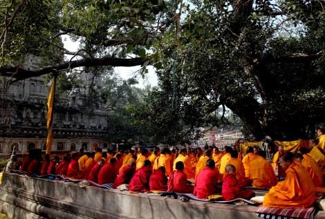Budddhist_monks_india